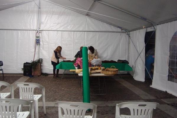 castelverde-2012-5-copia311239F6-48B2-9824-2EC9-32DE2B8439AD.jpg