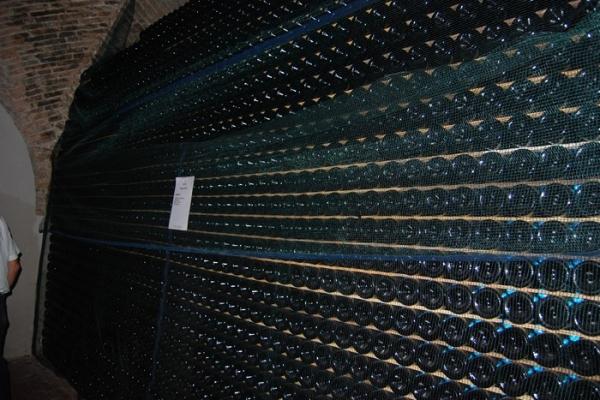 dsc-0682-copiaC39EAF6F-EF85-7799-F8BF-C50D5409A1A2.jpg