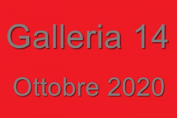 14-2020-112FBAA86-758A-376E-36C2-DD0ACF8EC9A4.jpg