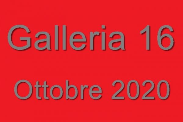 16-20201E9D4D08-E187-D805-EA8E-B5AEDE46D08A.jpg