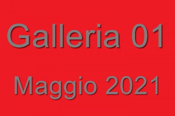 2021-01-018AA93DB7-8C7C-7A15-4861-0D80D3B21CD1.jpg