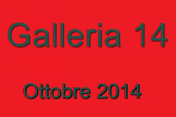 2014-14-ottobre-262796D5B-DC1D-BF8D-3CE2-D33911486C1B.jpg